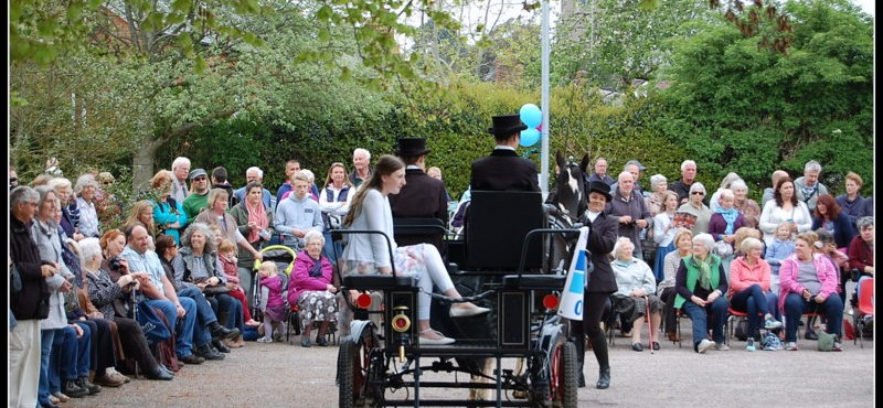 East Budleigh May Day | May Queen
